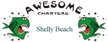 Shelly Beach Awesome Fishing Charters